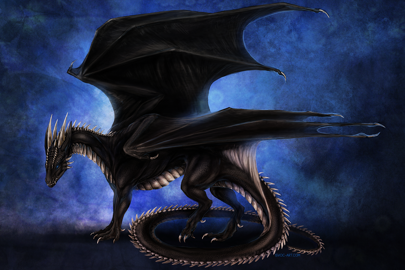 e926 ambiguous_gender black_scales blue_eyes claws detailed dragon feral gradient_background horn isvoc koori membranous_wings nude scales scalie simple_background smooth_horn solo spines standing white_scales wings
