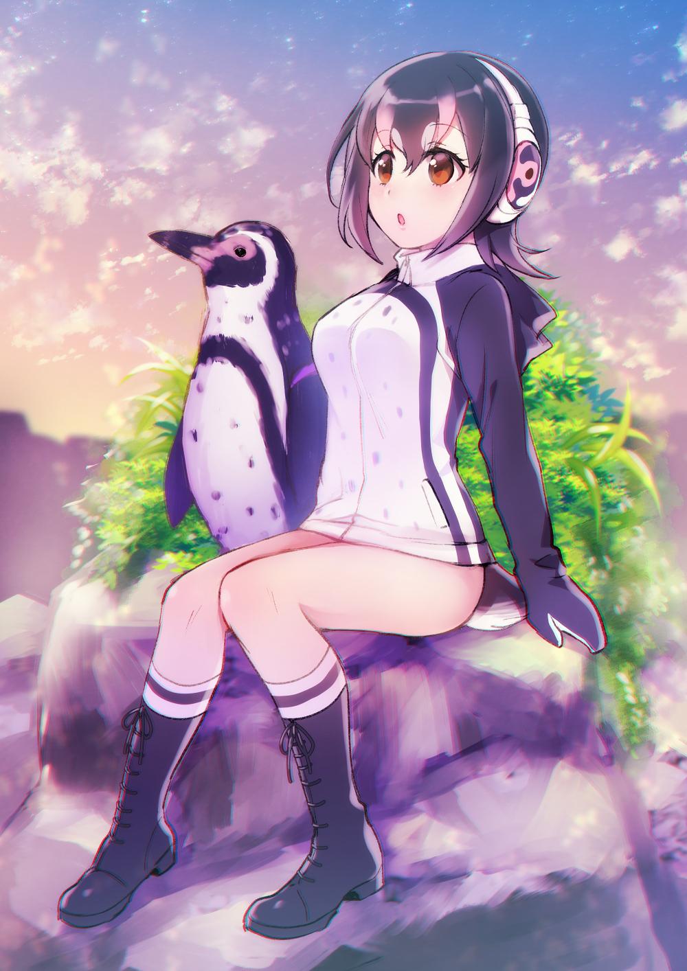 e926 animal_humanoid avian avian_humanoid bird black_hair duo female feral grape-kun hair humanoid humboldt_penguin humboldt_penguin_(kemono_friends) kemono_friends male orange_eyes outside penguin ねめ
