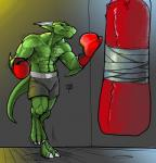 anthro boxing_gloves clothed clothing colored_sketch horn jewelry male muscular muscular_male ndragon3 necklace sandbag scalie solo standing toplessRating: SafeScore: 2User: Cat-in-FlightDate: April 22, 2018