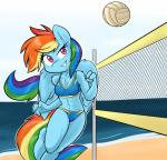abs ambris anthro anthrofied athletic ball beach bikini blue_feathers blue_fur breasts clothing cloud equine feathered_wings feathers female friendship_is_magic fur hair hi_res mammal multicolored_hair multicolored_tail my_little_pony net outside pegasus rainbow_dash_(mlp) rainbow_hair rainbow_tail seaside sky solo sport swimsuit volleyball volleyball_(ball) volleyball_net wingsRating: SafeScore: 7User: slyroonDate: September 30, 2017