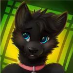2014 anthro black_fur black_hair blue_eyes bust_portrait cat collar cute feline fur hair hi_res icon male mammal nude portrait smile solo thanshuhaiRating: SafeScore: 23User: leomoleDate: May 26, 2016