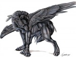 black_fur blue_eyes canine feathered_wings feathers feral fur looking_at_viewer lyanti male mammal simple_background solo wings wolf