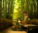 akitamonster anthro bamboo brown_hair canine day detailed_background fox fur green_eyes hair male mammal nude orange_fur outside sitting smile solo white_furRating: SafeScore: 10User: MillcoreDate: April 24, 2017