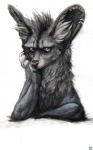 2011 ambiguous_gender bat-eared_fox canine ear_piercing fox grey_eyes grumpy ixixix looking_at_viewer mammal piercing solo ಠ_ಠRating: SafeScore: 40User: KaikDate: March 01, 2013