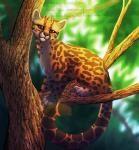 2012 ambiguous_gender brown_eyes claws day feline feral hi_res mammal margay neotheta outside paws solo watermarkRating: SafeScore: 6User: MillcoreDate: June 27, 2017