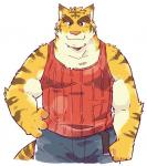 clothed clothing feline fully_clothed garouzuki jeans kemono looking_at_viewer male mammal morenatsu pants pattern_clothing red_shirt simple_background solo striped_clothing striped_shirt tiger torahiko_(morenatsu) white_backgroundRating: SafeScore: 4User: underkerfluffleDate: October 18, 2017