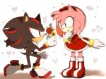 <3 amy_rose anthro clothing duo female flower gloves hedgehog male mammal nicky-306 plant shadow_the_hedgehog sonic_(series) video_gamesRating: SafeScore: 1User: Cane751Date: February 19, 2018