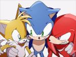 2017 anthro canine clothing echidna fox gloves group hedgehog knuckles_the_echidna male mammal miles_prower monotreme omiya599 simple_background sonic_(series) sonic_the_hedgehog video_games white_background