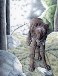 ambiguous_gender canine colored_pencil_(artwork) feral looking_at_viewer lyanti mammal markings solo traditional_media_(artwork)