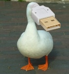 ambiguous_gender animate_inanimate avian bird brick duck edit feral for_a_head low_res object_head outside real shopped solo unknown_artist usb_compatible webbed_feet what what_has_science_done