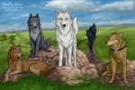 2003 akela_taka black_fur blue_(wolf's_rain) brown_fur canine cloud collar feral fur grey_fur group hige kiba_(wolf's_rain) male mammal outside sky tan_fur toboe tsume white_fur wolf wolf's_rain yellow_eyesRating: SafeScore: 2User: WolfieWolfie1992Date: March 26, 2010
