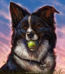 2016 amber_eyes ambiguous_gender avian ball black_fur black_nose border_collie bust_portrait canine cloud collar collie day detailed detailed_background dog feral flashw flying fur hi_res holding_ball holding_object inner_ear_fluff long_mouth looking_at_viewer mammal mouth_hold no_sclera orange_eyes outside pendant portrait sky snout solo_focus sunlight tennis_ball whiskers white_fur