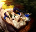 3_toes 4_fingers anthro blue_hair digitigrade dragon grass hair kyander membranous_wings nude smile toes wings yellow_eyesRating: SafeScore: 0User: MillcoreDate: July 26, 2017