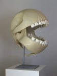 bone le_gentil_garcon low_res male pac-man pac-man_(series) real skeleton skull video_games zero_picturedRating: SafeScore: -1User: AnomynousDate: August 30, 2009