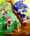 2013 amy_rose anthro blue_eyes boots canine clothing dipstick_tail english_text female footwear fox fur gloves green_eyes hair headband hedgehog male mammal miles_prower multicolored_tail myly14 one_eye_closed outside pink_hair short_hair signature sonic_(series) sonic_the_hedgehog summer text tree video_games white_fur wink yellow_fur