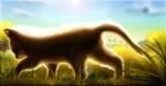 backlit cat cloud cub cute day detailed feline feral fur grass lens_flare male mammal nude orange_fur outside side_view sky solo sterlingruinsfall337 walking whiskers youngRating: SafeScore: 9User: XxRavexXDate: June 24, 2011