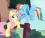 2017 blush boop building cute cutie_mark duo equine eyelashes eyes_closed feathered_wings feathers female fence fluttershy_(mlp) flying friendship_is_magic hair hi_res house long_hair looking_away makeup mammal mascara multicolored_hair my_little_pony open_mouth outside pegasus pink_hair plant rainbow_dash_(mlp) rainbow_hair shrub shutterflyeqd smile spread_wings teal_eyes wingsRating: SafeScore: 9User: GlimGlamDate: December 07, 2017