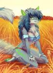 anthro bandeau blue_hair breasts canine clothed clothing detailed_background female green_eyes green_nose green_pawpads hair imanika kneeling mammal pawpads smile solo