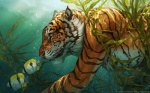 16:10 2012 ambient_fish balaa bubble diving feline feral fish fur green_background keone light male mammal marine orange_fur sea seaweed simple_background swimming tiger underwater wallpaper water watermark whiskers yellow_eyes