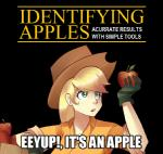 alternate_species apple applejack_(mlp) blonde_hair captain_obvious cowboy_hat english_text female food freckles friendship_is_magic fruit hair hat human humanized image_macro mammal meme mercenario1945 my_little_pony not_furry parody sallymon solo text