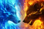 ambiguous_gender angry blue_eyes blue_fur brown_fur canine detailed_background duo eye_contact fangs feral fire fur glowing glowing_eyes ice jojoesart mammal red_fur sad sharp_teeth snarling teeth wolf yellow_eyes yin_yang