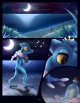 ambiguous_gender amphibian anthro beach big_eyes bottle_post comic darkmirage frogadier fyoshi grass hi_res meraence moon night nintendo outside pokémon pokémon_(species) reflection seaside semi-anthro shells singing solo star video_games water