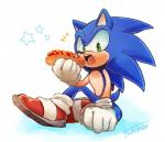 2017 anthro chili_dog clothing food gloves hedgehog looking_at_viewer male mammal simple_background solo sonic_(series) sonic_the_hedgehog tk_s623 video_games white_background