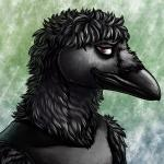2017 anthro avian bags_under_eyes beak bird black_clothing black_feathers black_shirt black_topwear brown_eyes clothed clothing conditional_dnp corvid crow feathers male ratte shirt solo tank_top