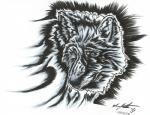2015 black_and_white canine kagethefallen male mammal monochrome solo wolfRating: SafeScore: 5User: KageTheFallenDate: December 18, 2016