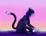 cat feline maho-gato male mammal shiryuoRating: SafeScore: 2User: MahoDate: July 22, 2017