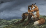 16:10 anthro blotch canine clothing cloud flower fox he_loves_me he_loves_me_not male mammal nature outside overcast plant sad shorts sky solo wallpaper widescreenRating: SafeScore: 23User: thedxmDate: November 02, 2009