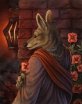 alectorfencer ambiguous_gender amon anthro canine comic cover_art jackal mammal piercing red_lantern robes rukis solo warm_colorsRating: SafeScore: 27User: cookiekangarooDate: October 28, 2010