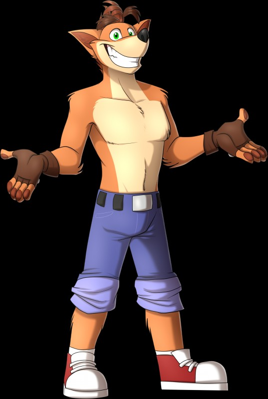 e926 5_fingers absurd_res alpha_channel anthro anthrofied bandicoot belt blue_bottomwear blue_clothing brown_armwear brown_hair clothed clothing collarbone crash_bandicoot crash_bandicoot_(series) fingerless_gloves footwear fur gloves green_eyes hair hi_res male mammal marsupial namygaga orange_fur pants rolled_up_sleeves shoes short_hair simple_background smile solo standing teeth topless transparent_background video_games
