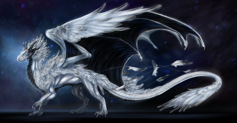 e926 2018 ambiguous_gender black_scales claws curved_horn digital_drawing_(artwork) digital_media_(artwork) dragon feathered_dragon feathers feral hi_res horn isvoc kaliyah_(dragon) membranous_wings photorealism scales scalie simple_background smooth_horn solo standing white_feathers white_scales wings