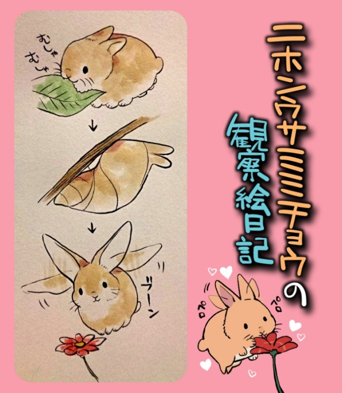 e926 2015 <3 arthropod flower fusion ichthy0stega insect japanese_text lagomorph mammal multi_leg multi_limb plant rabbit text translated whiskers
