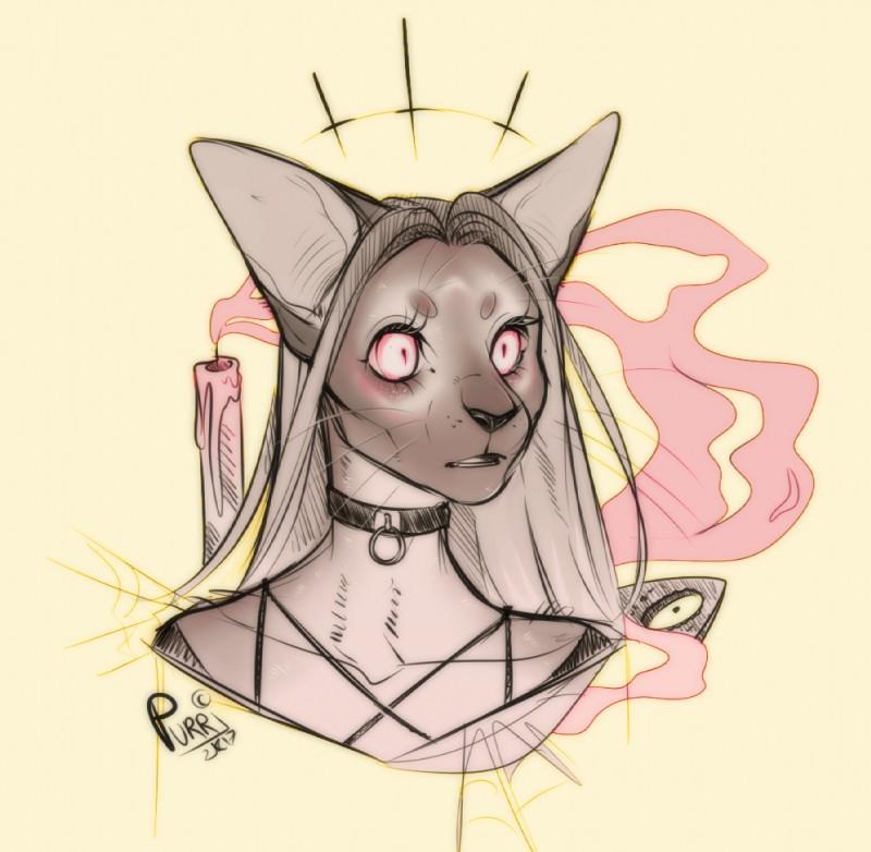 e926 2017 anthro cat digital_media_(artwork) feline female grey_hair hair headshot_portrait mammal pink_eyes portrait purrchinyan solo whiskers