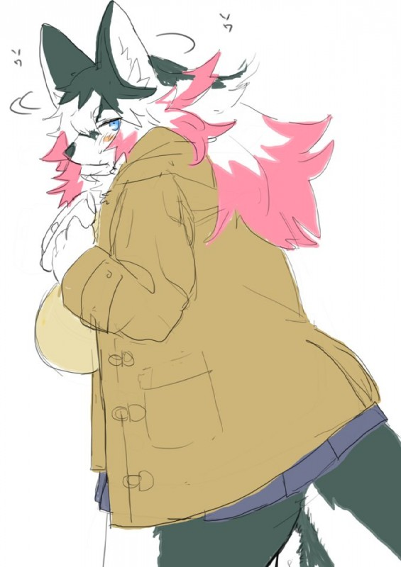 e926 anthro big_breasts big_thighs blue_eyes blush breasts canine chest_tuft clothed clothing coat female fur grey_fur hair hiding kemono kishibe looking_at_viewer mammal multicolored_hair overweight skirt solo text tuft white_fur wolf